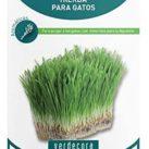 comprar semillas de hierba ahuyenta mosquitos