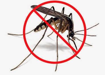 mejores sitemas antimosquitos y mata mosquitos del mercado.