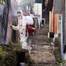 control de plagas en ciudad